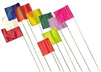 "Evidence Flags, 21"" high, Orange"