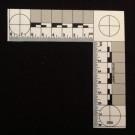 L-Scale, Plastic, White PMS, Metric, 8cmx8cm**Special**