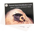 Forensic Insect Identification Cards**Special**